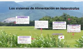 La función de nutrición en heterotrofos