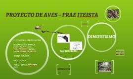 PROYECTO DE AVES – PRAE ITEISTA