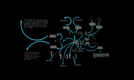 Copy of Capacidades y Bienestar