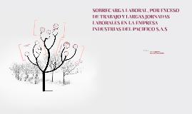 SOBRECARGA LABORAL, POR EXCESO DE TRABAJO Y LARGAS JORNADAS