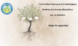 Universidad Autónoma de Ciudad Juárez Instituto de Ciencias