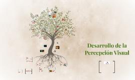 Desarrollo de la Percepcion Visual