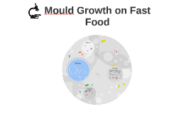 Mould Growth on Fast Food