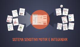 SISTEMA SENSITIVO MOTOR E INTEGRADOR