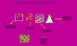 Yellow Fever, By: Shyanne Paul, Period 4