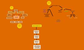 Tipos de Mapas conseptuales