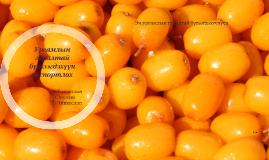 Copy of Ургамлын гаралтай бүтээгдэхүүн экспортлох