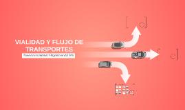 VIALIDAD Y FLUJO DE TRANSPORTES