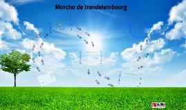 Marcha Trendelenburg