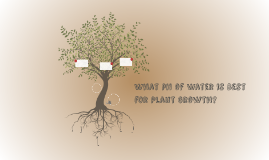 What pH of Water is Best for Plant Growth?