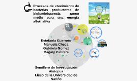 Procesos de crecimiento de bacterias productoras de luciferi