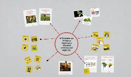 El Ecuador en el marco regional y mundial a inicios del sigl