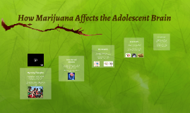 How Marijuana Affects the Adolescent Brain