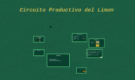 Circuito Productivo del Limon