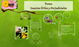 Copy of Insectos Útiles y Perjudiciales