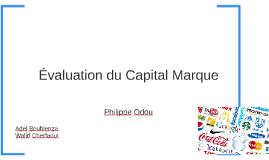 Evaluation du Capital Marque