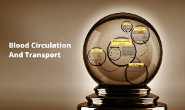 Copy of Blood Circulation And Transport