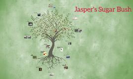 Jasper's Sugar Bush