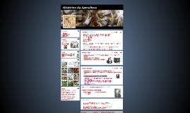 Histórico da Apicultura