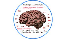Patologia Macroscópica do Sistema Nervoso Central