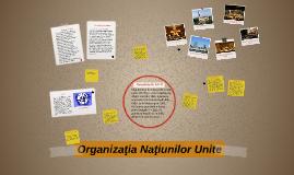 Copy of Organizaţia Naţiunilor Unite