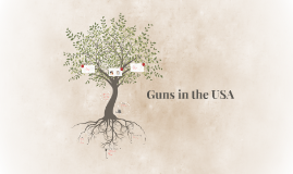 Guns in the USA
