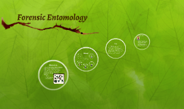 forensic entomology essays Forensic entomology is using insect biology to determine specific aspects of a crime it can be used to determine time of death, whether or not a body has been moved.