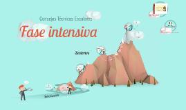 Copy of Fase Intensiva de los CTE 2015-2016