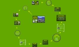Copy of Ecoturismo responsable de Valle del Cocora