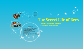 Copy of The Secret Life Of Bees