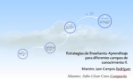 Copy of Estrategias de Enseñanza-Aprendizaje para diferentes campos