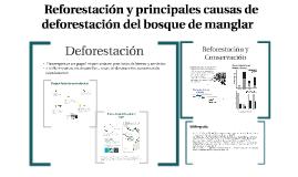 Deforestación y Reforestación de Bosque de manglar