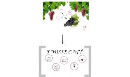 Vinos Tintos y Pousse Café