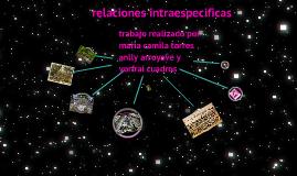 Copy of Copy of relaciones itra e iterespecificas