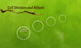 Cell Division and Mitois