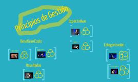 Gestion de Organizaciones: Principios de Gestión