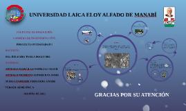 UNIVERSIDAD LAICA ELOY ALFADO DE MANABÍ