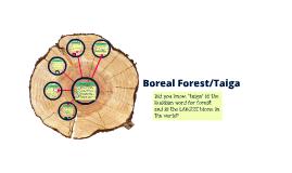 Boreal Forest/Taiga