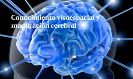 Copy of Conocimiento visoespacial y maduración cerebral