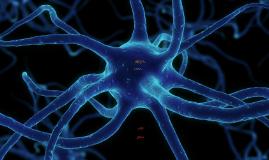 Neuroinfecciones Narvaez