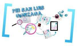 PEI INSTITUCION EDUCATIVA SAN LUIS GONZAGA