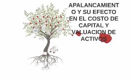 Copy of APALANCAMIENTO Y SU EFECTO EN EL COSTO DE CAPITAL Y VALUACIO