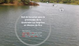Red de Escuelas para la protección de la Quebrada Los Negrit