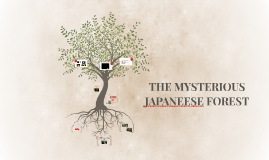 THE MYSTERIOUS JAPANEESE FOREST
