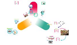 Copy of Copy of Clasificacion de las empresas por su actividad o giro