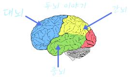 두뇌이야기