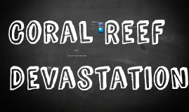 Coral Reef Devestation