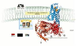 Proteínas G