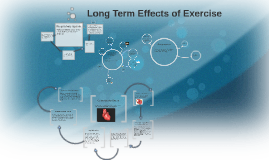 Copy of Long Term Effects of Exercise in the  Musculoskeletal System