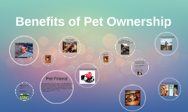 Benefits of pet ownership essays
